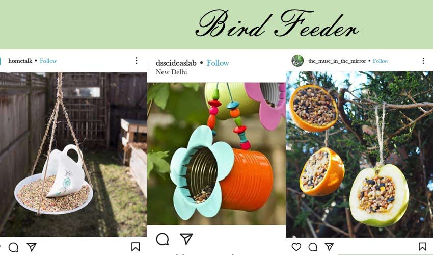 bird-feeder-diy-garden-project-ideas.jpg