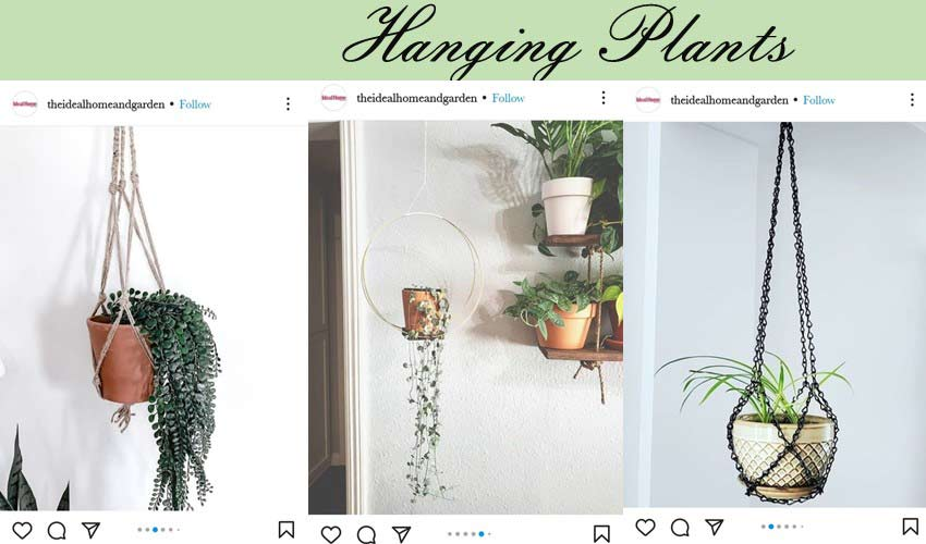 diy-garden-ideas-hanging-pots.jpg