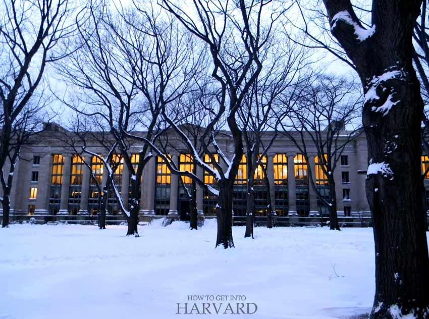 harvard-law-school