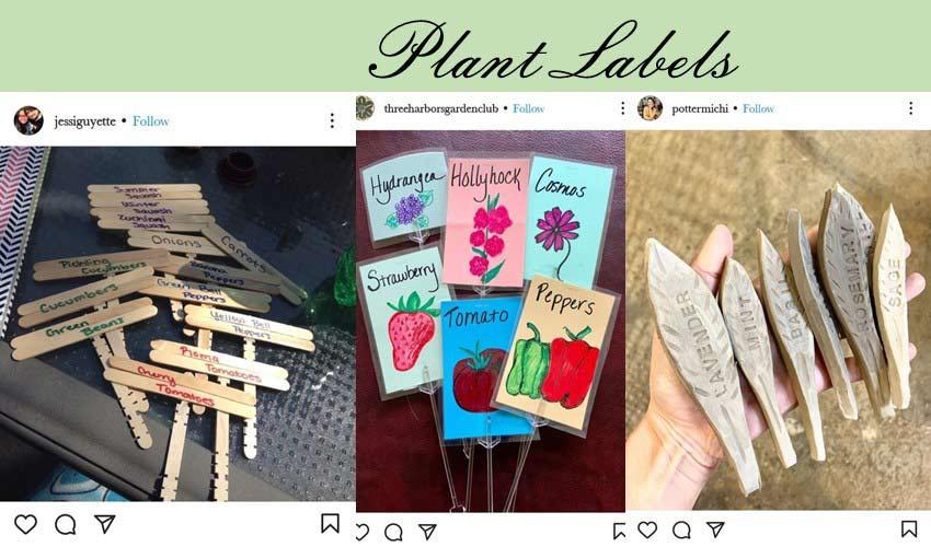 plant-labels-diy-garden-project-ideas.jpg