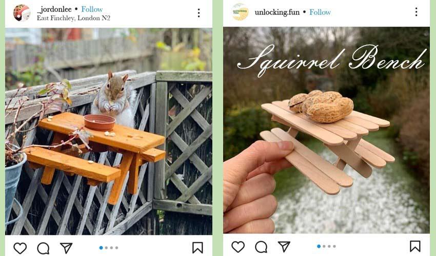 squirrel-bench-diy-garden-project-ideas.jpg