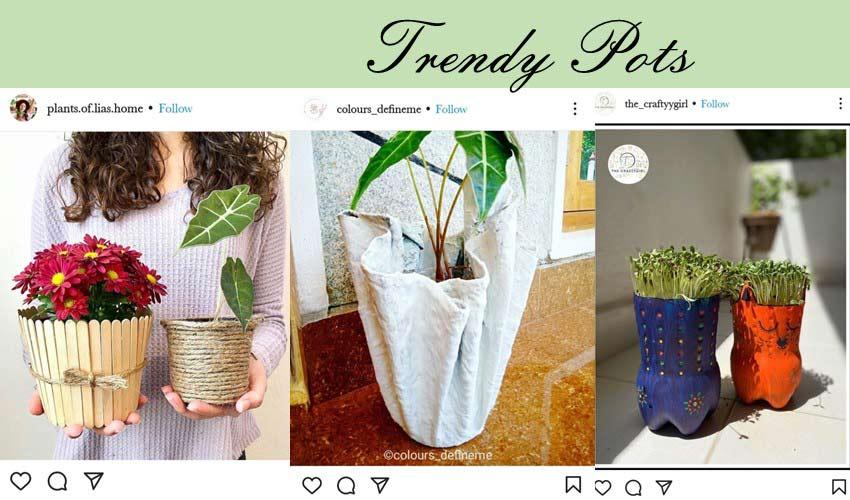 trendy-pots-diy-garden-project-ideas.jpg